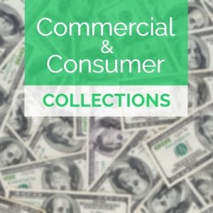 Commercial and consumer services.